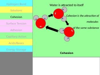 Properties of Water Flipbook Notes