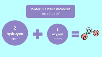 Properties of Water PowerPoint and Questions