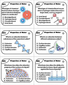 Properties of Water Task Cards (Cohesion, Adhesion, Hydrogen Bonds, etc.)