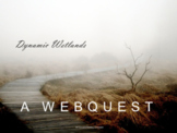 Environmental Science, Ecology, Ecosystems: Protecting Wetlands Webquest
