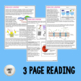 Protein Functions Comprehension Reading - Print & Google Versions