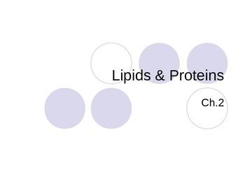 Protein & Lipids PowerPoint
