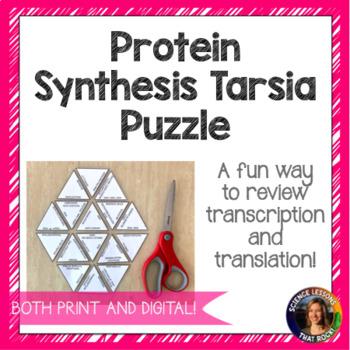 Protein Synthesis Tarsia Puzzle