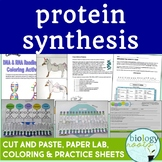 Protein Synthesis Bundle