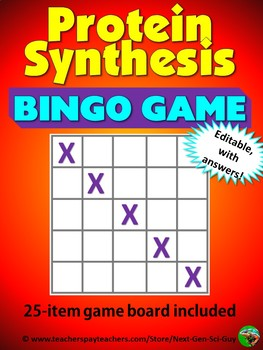 Protein Synthesis Bingo Review Game