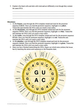 Protein synthesis blueprint activity by science lessons that rock protein synthesis blueprint activity malvernweather Choice Image