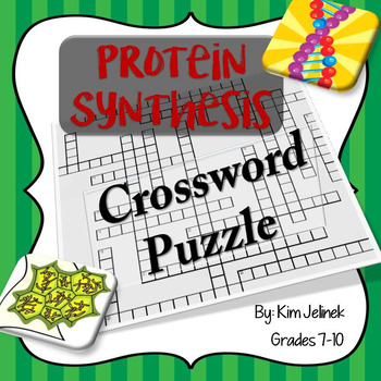 Protein Synthesis Crossword Puzzle