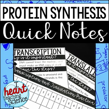 Protein Synthesis Interactive Notebook Activity