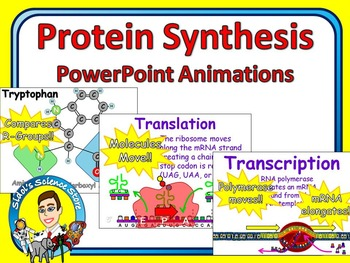 Protein Synthesis PowerPoint Animations