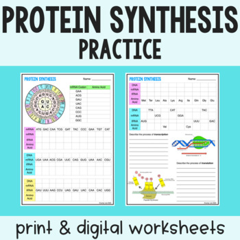 Protein Synthesis Practice - Transcription and Translation - Print & Google