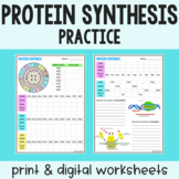 Protein Synthesis Practice - Transcription and Translation - PDF & Digital