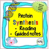 Protein Synthesis Reading and Guided Notes