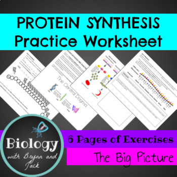Protein Synthesis Practice: Replication, Transcription and Translation
