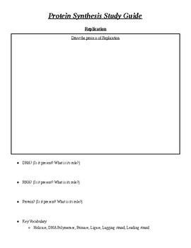 Protein Synthesis Review Worksheet
