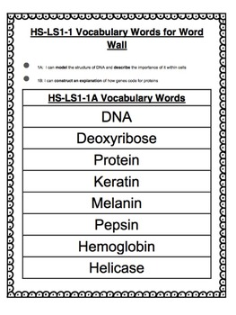 Protein Synthesis Vocabulary Bundle (NGSS* Aligned)