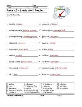 Protein Synthesis Word Search and Printable Vocabulary Worksheet Puzzles