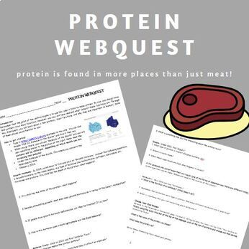 Protein WebQuest- no key