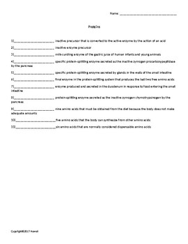 Proteins Quiz or Worksheet for Nutrition and Health Students