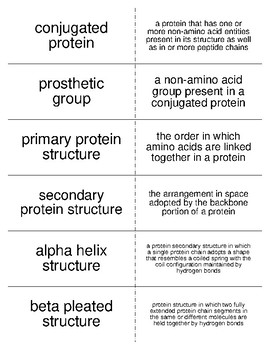 Proteins Vocabulary Flash Cards for Biological Chemistry