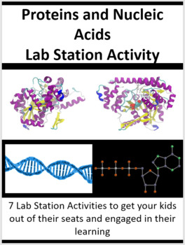 Proteins and Nucleic Acids - 7 Lab Station Activities