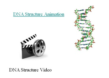 Proteins and Nucleic Acids - Biology PowerPoint Lesson & Student Notes Package