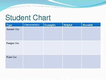 Protist Powerpoint Presentation