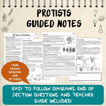Protists Guided Notes