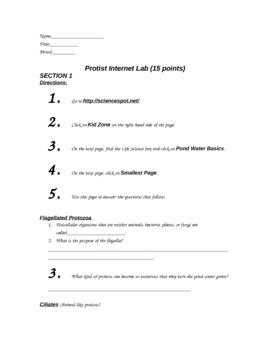 Protists Internet Lab