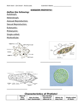 Protists Review Guide