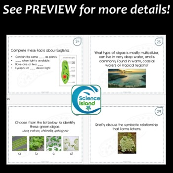 Protists Task Cards with PowerPoint Review