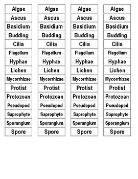 Protists and Fungi Cut-n-Paste Vocabulary