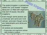 Protists and Fungi Kingdoms