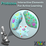 Protozoa. Interactive Elements For Active Learning BUNDLE