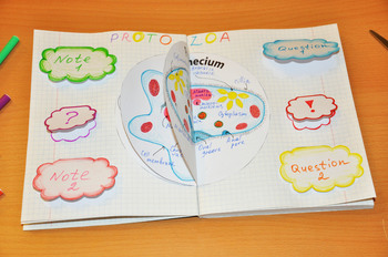 Protozoa. Interactive Notebook. Part 2. Foldable Circles and Clouds