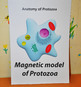 Protozoa. Resource for Training and Testing