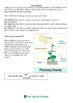 Proving Photosynthesis Workbook Sheet Mission Differentiated