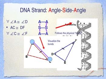 Proving Triangles are Congruent via The Clone Idea