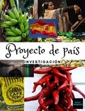 Proyecto de país #1 - investigación (cultural project series)