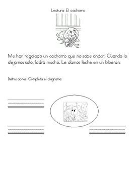 Prueba diagnóstica de Español
