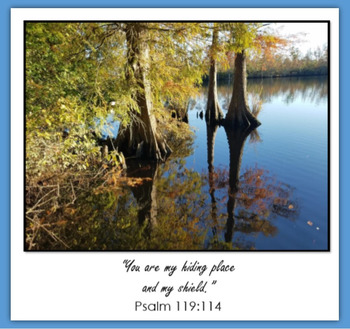 Psalm 119 (ebook)