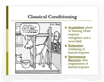 psychology classical operant conditioning ppt analytic activities. Black Bedroom Furniture Sets. Home Design Ideas