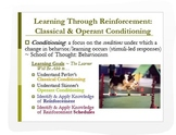 Psychology: Classical & Operant Conditioning PPT + Analyti
