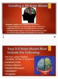 Psychology: Collaborative 3D Brain Activity! Reflective, E
