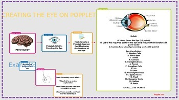 Psychology Sensation Perception Unit Creating a Popplet Eye Activity