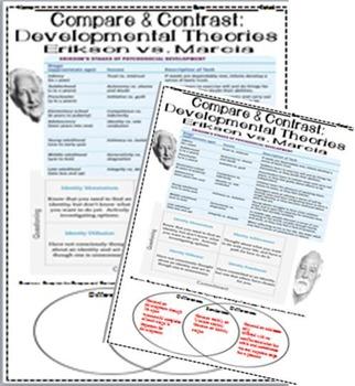 Psychology Erikson Vs Marcia Compare Contrast Graphic Organizer Development KEY