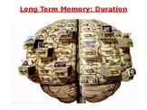 Psychology - Long Term Memory Capacity and Duration