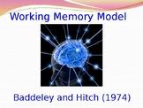 Psychology - Memory - Working Memory Model