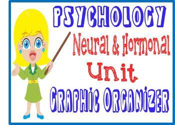 Psychology Neural & Hormonal Systems Graphic Organizer Neuroscience  Brain Unit