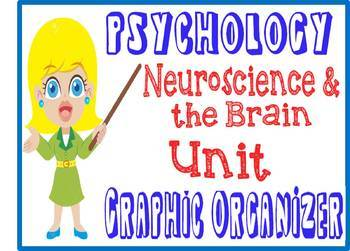 Psychology Neuroscience & Brain Graphic Organizer or Note Guide