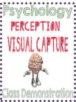 Psychology Perception Demonstration When Life gives you Lemons Simulation
